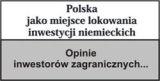 PAIiIZ-Berichte, englische Version
